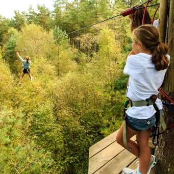 Go Ape offers exciting things to do in Hampshire