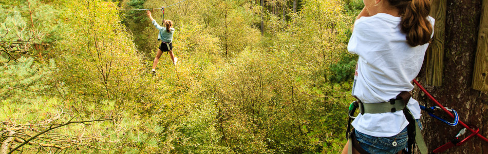 Great things to do in Hampshire at GoApe!