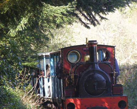 More things to do in Hampshire | Hollycombe Steam Museum